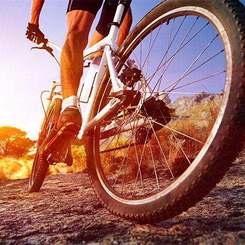 Bisiklet organizasyonları
